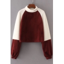 Simple Letter Embroidered Mock Neck Long Sleeve Color Block Velvet Sweatshirt
