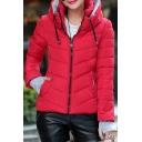 Winter's Basic Plain Hooded Long Sleeve Zip Up Warm Padded Coat