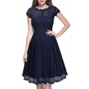 Basic Simple Plain Chic Lace Inserted Round Neck Short Sleeve Midi Flared Dress