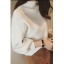 Fashion Solid Turtleneck Drop Sleeve Textured Pullover Sweater
