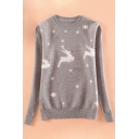 New Stylish Animal Print Round Neck Long Sleeve Pullover Sweater
