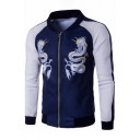 Color Block Dragon Pattern Striped Side Long Sleeve Baseball Jacket