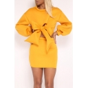 New Stylish Bow Top Solid Round Neck Long Sleeve Mini Skirt Co-ords