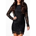 New Stylish Open Back Draped Back Round Neck Long Sleeve Lace Mini Dress