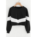 Chic Color Block Print Long Sleeve Round Neck Cropped Pullover Sweatshirt