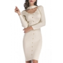 Chic Simple Plain Chocker Nexk Long Sleeve Pencil Mini Sweater Dress