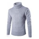 Leisure Simple Plain Turtleneck Long Sleeve Pullover Sweater