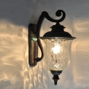 Industrial Vintage Wall Sconce with Clear Glass Shade, Black