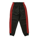 Simple Drawstring Waist Striped Side Pants with Pockets