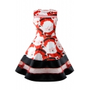 Chic Round Neck Father Christmas Print Mesh Patched Fit & Flare Dress