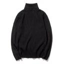Simple Plain Turtleneck Long Sleeve Pullover Sweater
