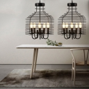 Industrial Vintage 13.8''W Chandelier with Metal Cage in Black, 5 Light