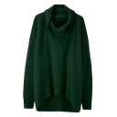 Casual Turtleneck Long Sleeves High Low Hem Pullover Loose Sweater