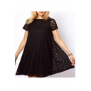 Simple Plain Round Neck Short Sleeve Lace Crochet Mini Dress