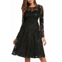 Elegant Lace Panel Round Neck Plain Zip-Back Patchwork Midi A-line Dress