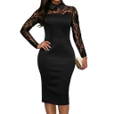 Floral Sheer Lapel Collar Lace Insert Long Sleeve Midi Pencil Dress