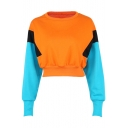Popular Color Block Round Neck Long Sleeves Pullover Cropped Sweatshirt