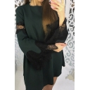 Lady Lace Insert Round Neck Long Sleeve Mini A-Line Dress