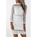 Daily Fashion High Neck Lace Panel Hollow Out Long Sleeve Mini Pencil Dress