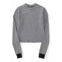 Spring Fashion Striped Pattern Round Neck Long Sleeve Cropped Tee