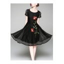 Floral Embroidered Mesh Insert Round Neck Short Sleeve Midi A-Line Dress