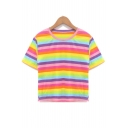 Colorful Striped Printed Round Neck Short Sleeve Crop Tee