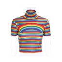 Rainbow Striped Printed High Neck Short Sleeve Crop Tee