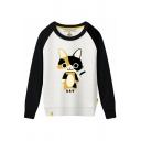 Color Block Raglan Long Sleeve KAT Cat Printed Round Neck Sweatshirt