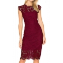 Round Neck Short Sleeve Lace Plain Midi Pencil Dress