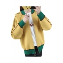 Color Block Contrast Striped Long Sleeve Zip Up Stand Up Collar Cardigan