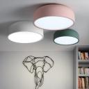 Dome Shade Ceiling Flush Mount Colorful Minimalist Painting Aluminum Decorative Flush Light