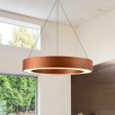 Decorative Antique Golden Modern Led Lights Halo Ring Led Lights Acrylic Lampshade 15.75