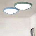 Post-modern Super Thin Flush Mount Lighting Macaroon Style Green/Blue Mango Shaped Led Ceiling Lights 12/18/26W Light-Adjustable 3 Sizes Available