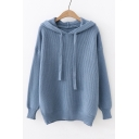 Long Sleeve Plain Leisure Ribbed Hooded Sweater