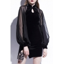 Mesh Velvet Patchwork Stand Collar Keyhole Front Lantern Sleeve Mini Bodycon Dress