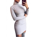 High Neck Long Sleeve Plain Ribbed Slim Mini Bodycon Dress