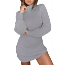 High Neck Long Sleeve Knit Slim Mini Sweater Dress