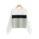 New Arrival Color Block Round Neck Long Sleeve Pullover Sweatshirt