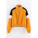 Half-Zip Stand Collar Color Block Long Sleeve Sweatshirt