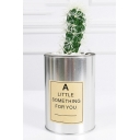 Plastic Succulent Cactus With Can Design Pot