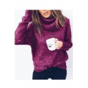 High Neck Long Sleeve Plain Regular Sweater
