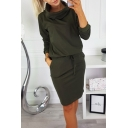 New Arrival Long Sleeve Turtleneck Solid Basic Knee Length Sheath Dress