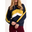 New Stylish Color Block Patchwork Long Sleeve Round Neck Navy Sweatshirt