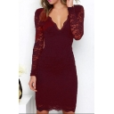 New Trendy Long Sleeve Sexy V Neck Plain Lace Mini Sheath Dress
