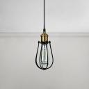 Industrial Metal Cage Suspension Light Steel 1 Light Decorative Lighting Fixture in Black