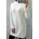 Warm-Up Simple Long Sleeve Plain Mock Neck Mini Shift Dress