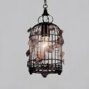 Rust Finish Bird Caged Pendant Lighting Loft Style Wrought Iron 1 Light Hanging Fixture