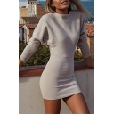 Simple Long Sleeve Crewneck Pain Bodycon Mini Dress