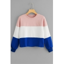 Chic Colorblock Round Neck Long Sleeve Casual Loose Pullover Pink Sweatshirt
