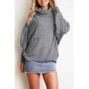 Winter Plain Rib Knit Turtleneck Long Sleeve Relaxed Sweater